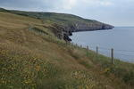 coastal-path-worth-swanage-sp35-80-6D02944